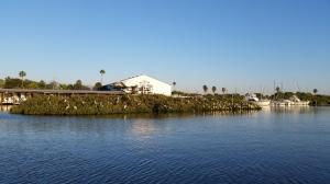 Pelican Island - New Symrna